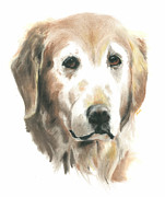 Retriever Pastels Posters - Golden Retriever Poster by Jessica Raines