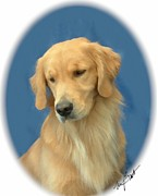 Retriever Digital Art - Golden Retriever Pensive by Maxine Bochnia