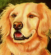 Animal Greeting Cards Drawings Posters - Golden Retriever Sweet As Sugar Poster by Susan A Becker