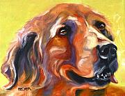 Oil Drawings - Golden Retriever The Shadow of Your Smile by Susan A Becker