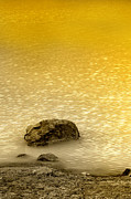 Water Scape Posters - Golden Silence Poster by Charuhas Images