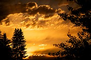 Sunset Framed Prints Metal Prints - Golden Sky 2 Metal Print by Kevin Bone