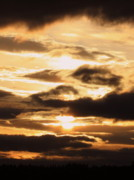 Golden Sunset Print by Carol Groenen