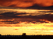 Golden Sunset IIi Print by Mark Lehar