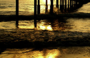 Linda Knorr Shafer - Golden Surf