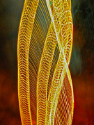 Yellow - Golden swirl abstract by Sean Griffin