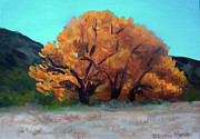 Cottonwood Paintings - Golden Tree by Stephen  Hanson