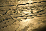 Golden Waves Print by Cindy Tiefenbrunn