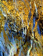Golden Weeping Willow Print by Dale   Ford