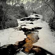 Rivers Art - Golden Winter by Al  Swasey