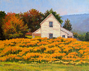 Goldenrod Wildflowers Prints - Goldenrod Time Print by Keith Burgess