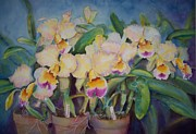 Golden Pink Orchid Framed Prints - Goldenzelle Framed Print by Phyllis Bleau