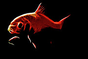 Goldfish Digital Art Prints - Goldfish 1 Print by Tilly Williams