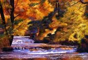 Falls Paintings - Goldstream River by David Lloyd Glover