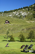 Chalet Posters - Golf bags on the green - Gold course Riederalp Switzerland Poster by Matthias Hauser