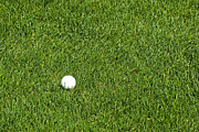Putt Photos - Golf Ball in the Tall Green Grass on a Resort Course by ELITE IMAGE photography By Chad McDermott