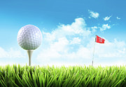 Putter Posters - Golf ball with tee in the grass  Poster by Sandra Cunningham