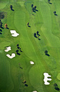 Aerial Posters - Golf Course Poster by Daniel Reiter