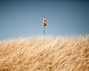 Golf Flag Prints - Golf Flag View From Dry High Grass Print by Miguel Salmeron