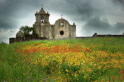 Hill Country Framed Prints - Goliad in Spring Framed Print by Jon Holiday