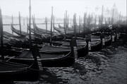 Olia Saunders Metal Prints - Gondolas at the Piazza San Marco Venice Metal Print by Design Remix