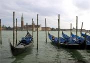 Venice Tour Prints - Gondolas Print by Mike Lester