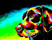 Black Lab Puppy Paintings - Good Boy by Mike OBrien