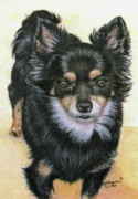 Chihuahua Artwork Posters - Good Golly Miss Molly Poster by Beverly Fuqua