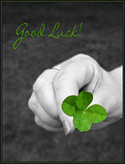 Four Leaf Clover Posters - Good Luck Poster by Kristin Elmquist