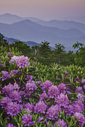 Mountain Photographs Prints - Good Morning at Carvers Gap Print by Rob Travis