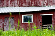Red Barn. New England Framed Prints - Good Ole Red Barn Framed Print by Karol  Livote