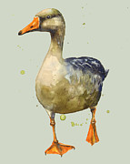 Grey Goose Prints - Goose - mother goose - geese Print by Alison Fennell