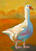 Goose Painting Framed Prints - Goose a farm animal Framed Print by Patricia Awapara