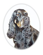 Gordon Setter Prints - Gordon Setter 286 Print by Larry Matthews