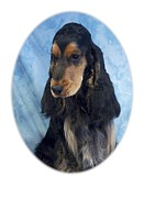 Gordon Setter Prints - Gordon Setter 553 Print by Larry Matthews