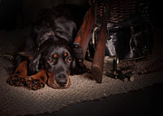 Gordon Setter Prints - Gordon setter with two guns... Print by Tanya Kozlovsky