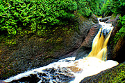 Matthew Winn - Gorge Falls in Spring