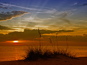 Gorgeous Sunset Print by Melanie Viola