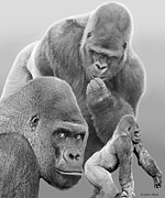 Primate Photo Prints - Gorilla Montage Print by Larry Linton