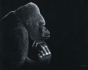 Gorilla Drawings - Gorilla My Dreams by Bill Gehring
