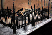 Church Yard Framed Prints - Gothic Cemetery Raven Framed Print by Kathy Fornal