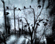 Corvus Brachyrhynchos Posters - Gothic Snow Storm Poster by Gothicolors And Crows