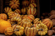 Food - Gourds by Robert Ullmann