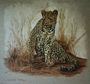 Leopards Paintings - Grace by Lucinda Coldrey