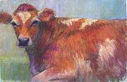 Cattle Pastels Framed Prints - Grace Framed Print by Susan Williamson