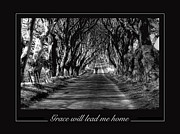 Dark Hedges Prints - Grace will lead me home Print by David McFarland