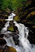 Moss Green Prints - Graceful Falls Print by Mike Reid