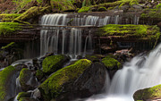 Olympic National Park Prints - Gracefully Flowing Print by Mike Reid