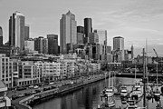 Seattle Framed Prints - Gracefully Urban Framed Print by Mike Reid