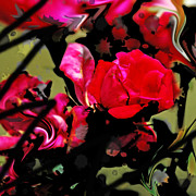 Abstract Floral Garden Acrylic Prints - Graffiti Rose Acrylic Print by Simone Hester